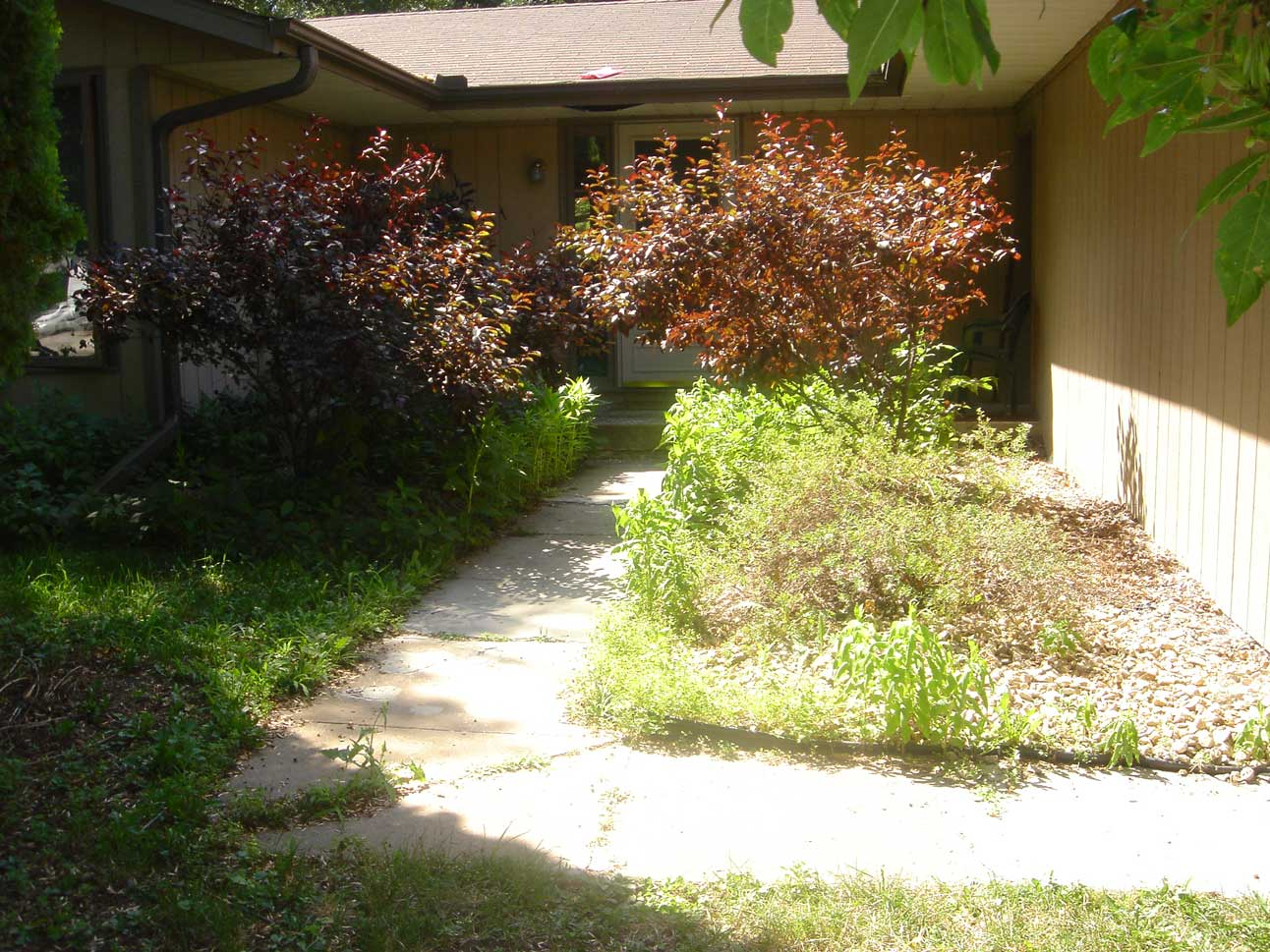 A weedy, overgrown front entrance is a problem for many homeowners.